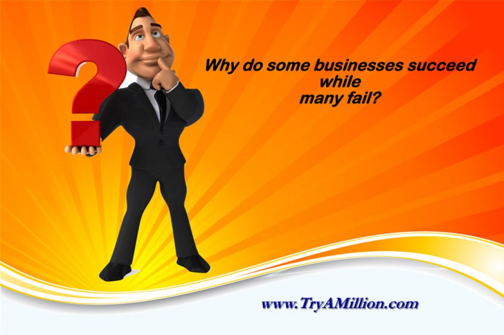 Why do some businesses succeed